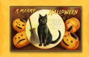 halloween-2829423_1920